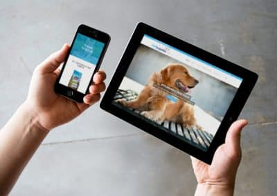 Pet shop E-commerce